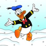 Winterduck Avatar
